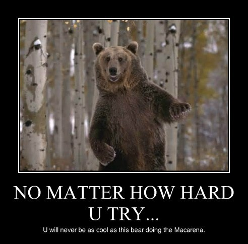 NO MATTER HOW HARD U TRY... U will never be as cool as this bear doing the Macarena.