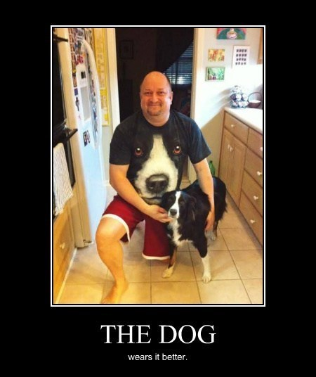 dogs face wtf funny - 8188178944