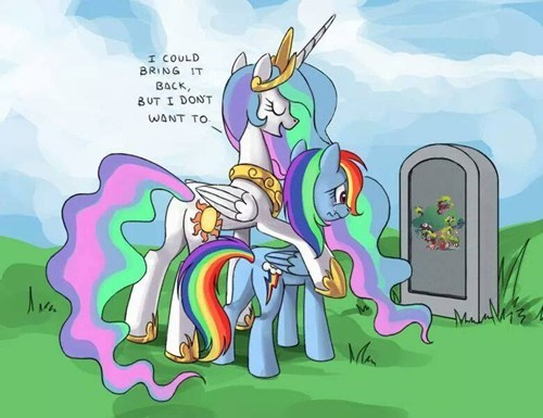 princess celestia rainbow dash - 8189158656