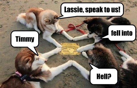 Lassie, speak to us! Timmy fell into Hell?
