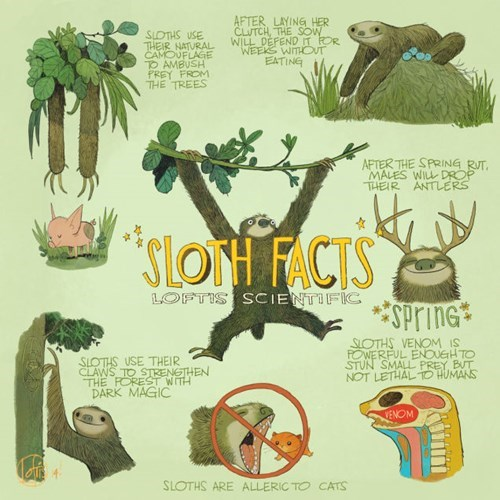 fake cute sloths infographic animals - 8189822720