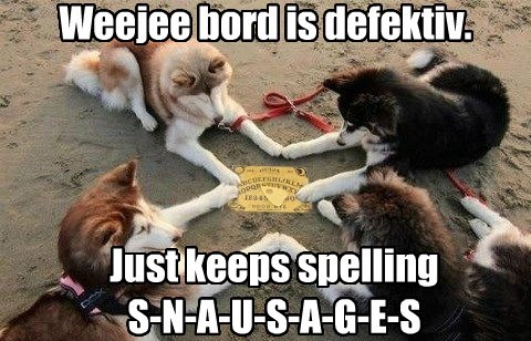 dogs,ouija board