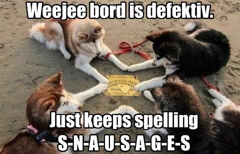 dogs ouija board - 8189878528