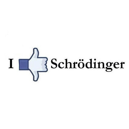 like facebook funny schrodingers-cat - 8190024704