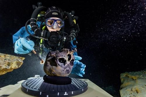 archeology discovery science paleontology - 8190071808