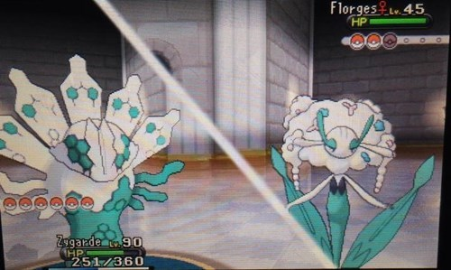 zygarde fresh Pokémon minty florges colgate - 8190216704