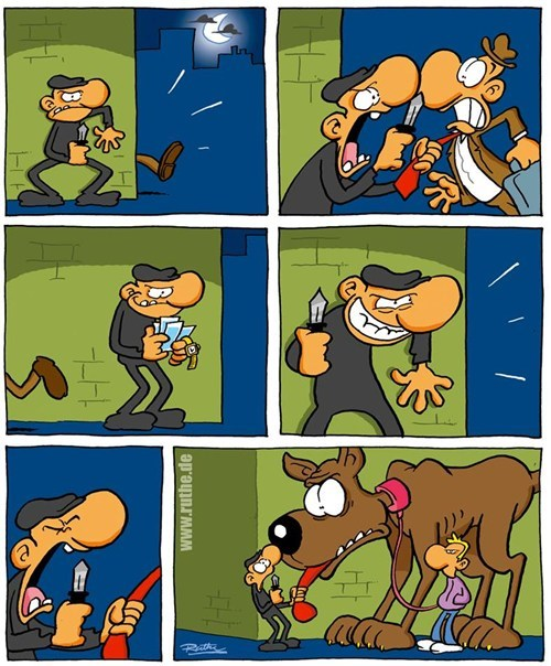 dogs robbers wtf web comics - 8192023040