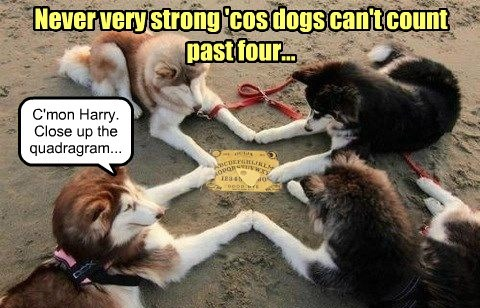 Never very strong 'cos dogs can't count past four... C'mon Harry. Close up the quadragram...
