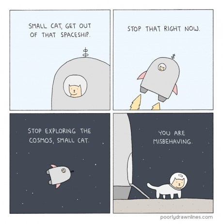 Cats,space,web comics