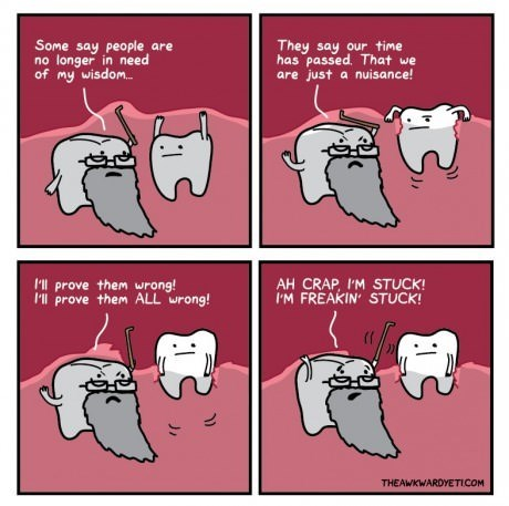 wisdom teeth web comics - 8192867328