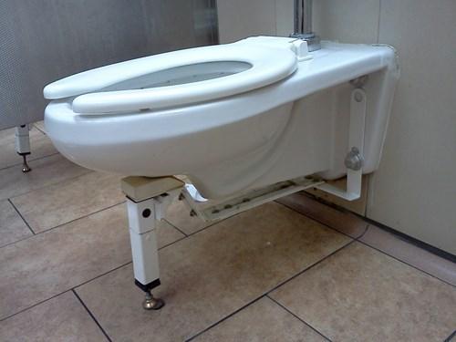bathrooms obesity toilets