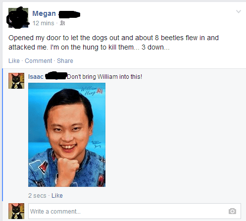 typo William Hung spelling - 8193719552