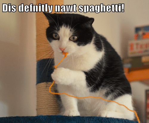 Dis defnitly nawt spaghetti!