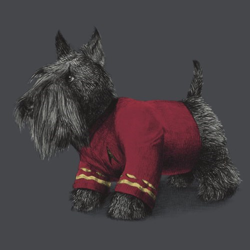 scotty tshirts scottish terrier Star Trek - 8194636544