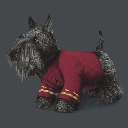 scotty tshirts scottish terrier Star Trek - 8194636544