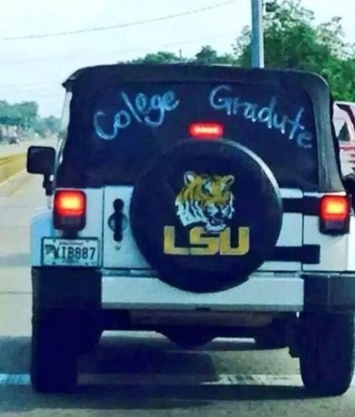 cars,irony,spelling,college,g rated,fail nation