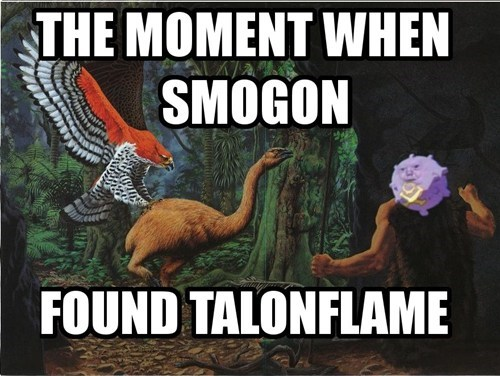 smogon Pokémon talonflame battling - 8195115008