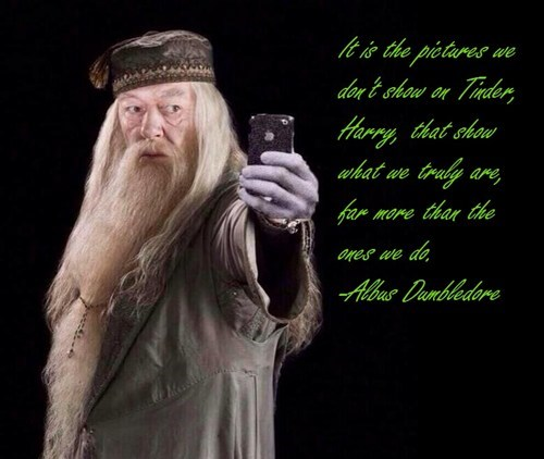 misquotes Harry Potter tinder dumbledore - 8195833856