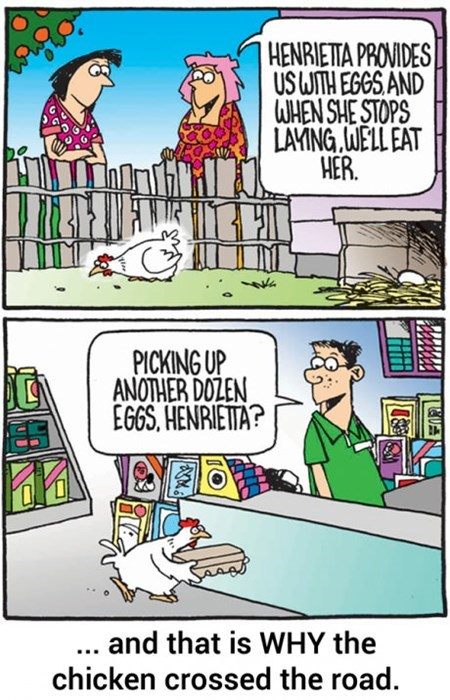 sad but true chickens web comics - 8195887360