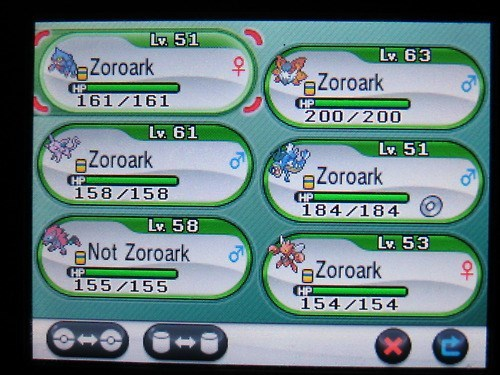 Pokémon flawless strategy zoroark