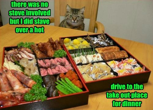 Cats,food,funny