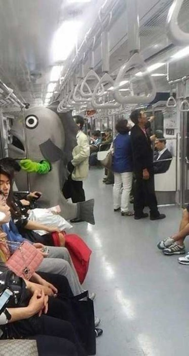 costume,fish,poorly dressed,Subway