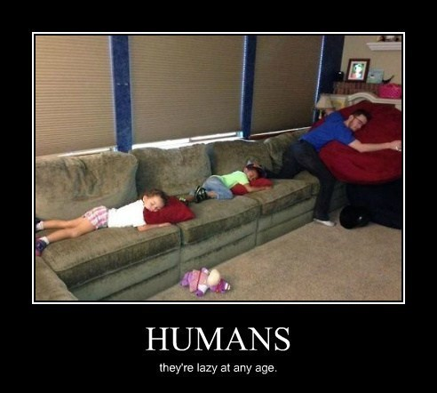 humans lazy funny - 8197084416