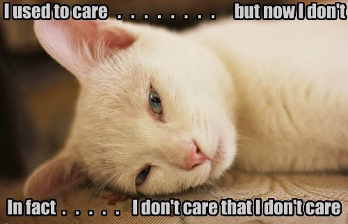 I used to care   .   .   .   .   .   .   .   .      but now I don't