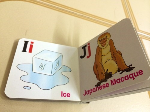 alphabet,animals,books,ice,kids,parenting,macaque