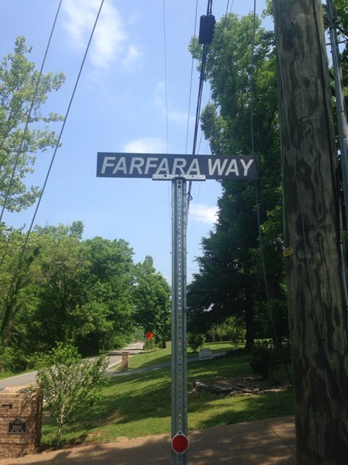 puns,star wars,names,street name