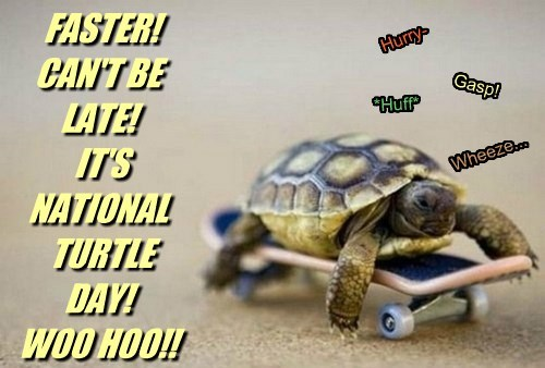 FASTER! CAN'T BE LATE! IT'S NATIONAL TURTLE DAY! WOO HOO!! *Huff* Gasp! Wheeze... Hurry-