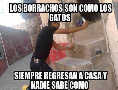 Memes bromas - 8198256640