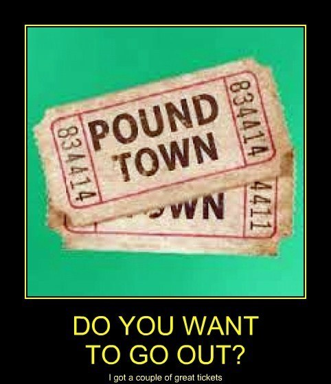 sexy times,funny,pound town