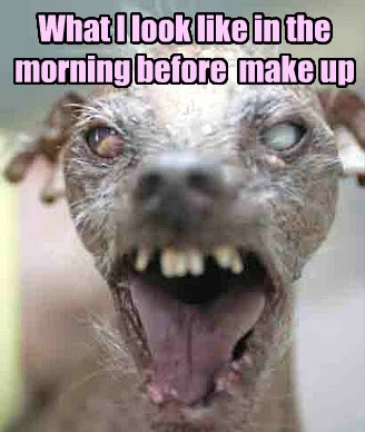 dogs,make up,ugly,funny