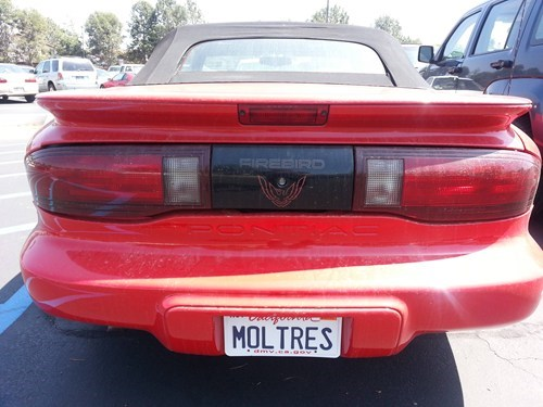 license plates IRL cars moltres - 8199701760