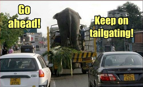 Go ahead! Keep on tailgating!