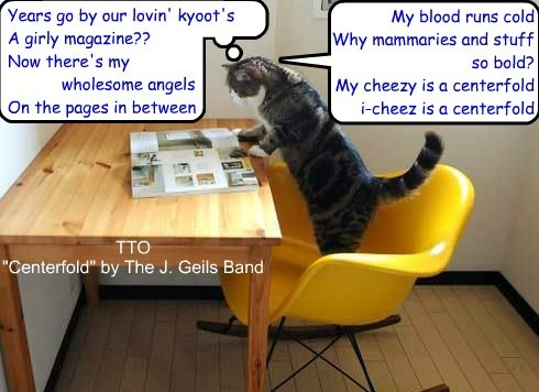 """Years go by our lovin' kyoot's A girly magazine?? Now there's my wholesome angels On the pages in between ggggg My blood runs cold Why mammaries and stuff so bold? My cheezy is a centerfold i-cheez is a centerfold TTO """"Centerfold"""" by The J. Geils Band"""