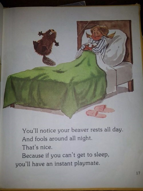 wtf beaver kids books funny - 8200631808