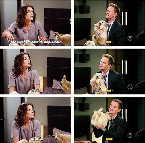 dogs,puppies,how i met your mother,cute,surprise