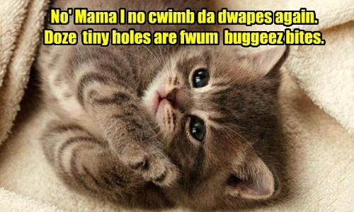 No' Mama I no cwimb da dwapes again. Doze tiny holes are fwum buggeez bites.
