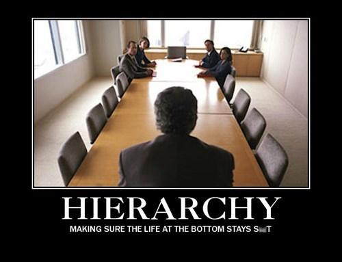 work hierarchy idiots funny