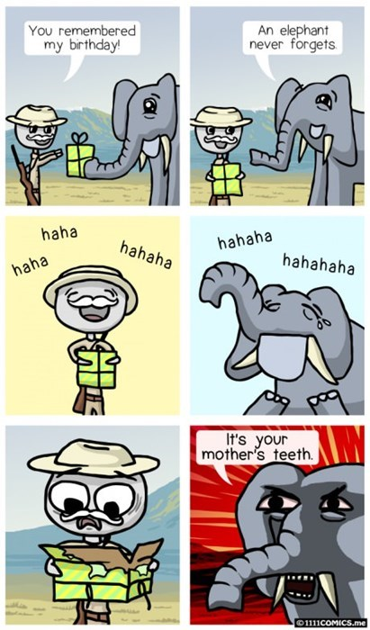 birthdays sad but true elephants web comics - 8202369536