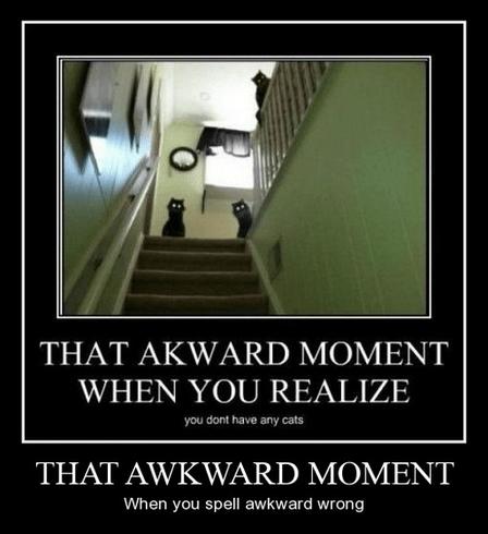 scary Awkward Cats funny - 8202478080