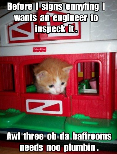 Cats funny house shopping - 8202627328