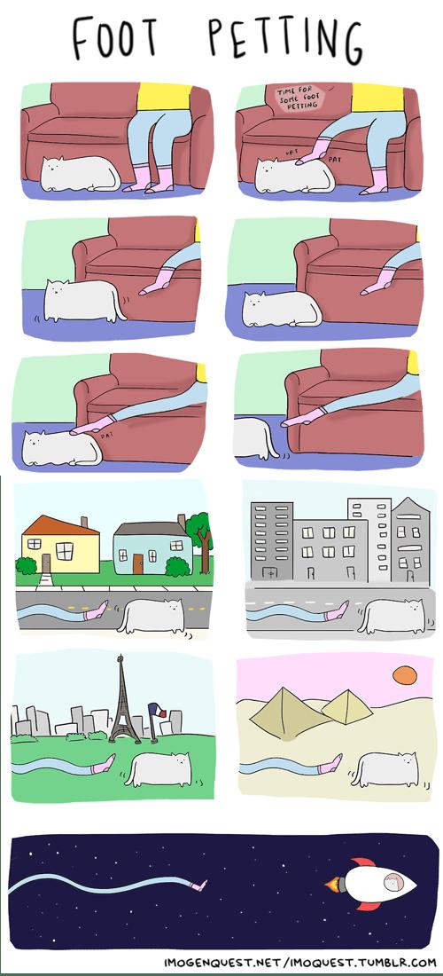 petting,feet,Cats,web comics