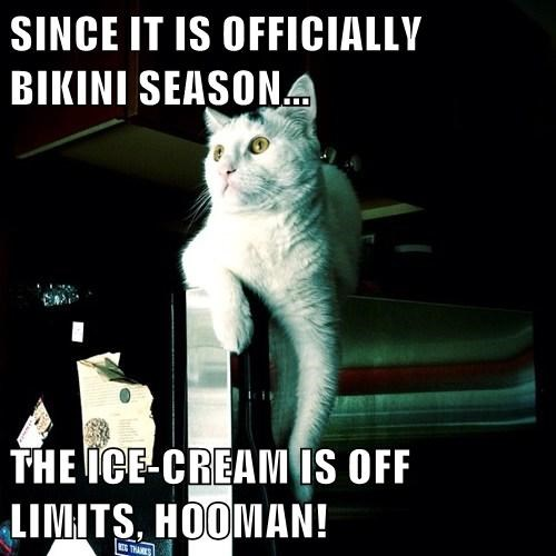 Cats,diet,bikini,funny,summer,ice cream