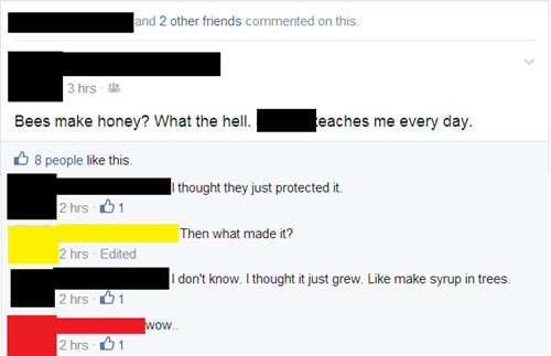 bees facepalm failbook g rated - 8202991616