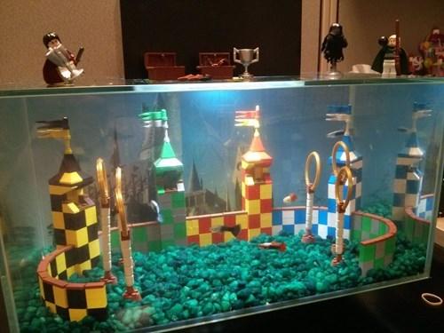 aquarium Harry Potter quidditch - 8203047680