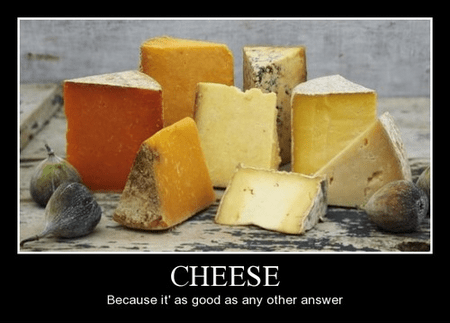 awesome cheese funny love - 8203594752