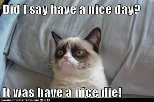 Did I Say Have A Nice Day It Was Have A Nice Die Lolcats Lol